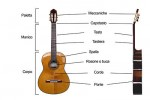 400px-Classical_Guitar_labelled_italian.jpg